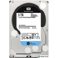 Жесткий диск WD Se 3TB (WD3000F9YZ)
