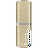 USB Flash Transcend JetFlash 820G 16GB (TS16GJF820G)
