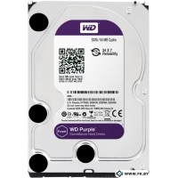 Жесткий диск WD Purple 5TB (WD50PURX)