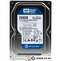 Жесткий диск WD Caviar Blue 250GB (WD2500AAKX)
