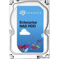Жесткий диск Seagate Enterprise NAS 3TB (ST3000VN0001)