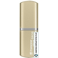 USB Flash Transcend JetFlash 820G 64GB (TS64GJF820G)