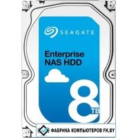 Жесткий диск Seagate Enterprise NAS 8TB [ST8000NE0001]