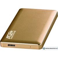 Бокс для жесткого диска AgeStar 31UB2A16 (золотистый)