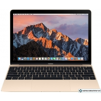 Ноутбук Apple MacBook (2017 год) [MNYL2]