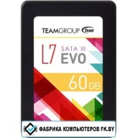 SSD Team L7 Evo 60GB [T253L7060GTC101]