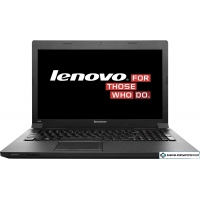 Ноутбук Lenovo B590 (59359268) 8 Гб