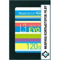 SSD Team L3 Evo 120GB [T253LE120GTC101]